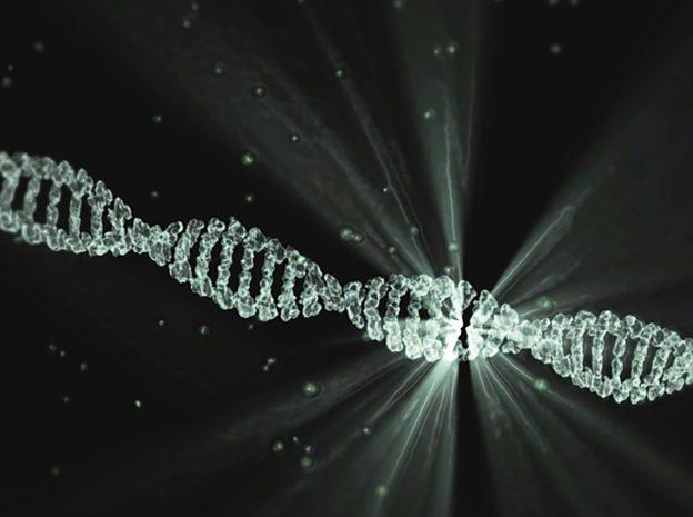 DNA 雙股維持結合狀態,疏水性才是背後關鍵力量