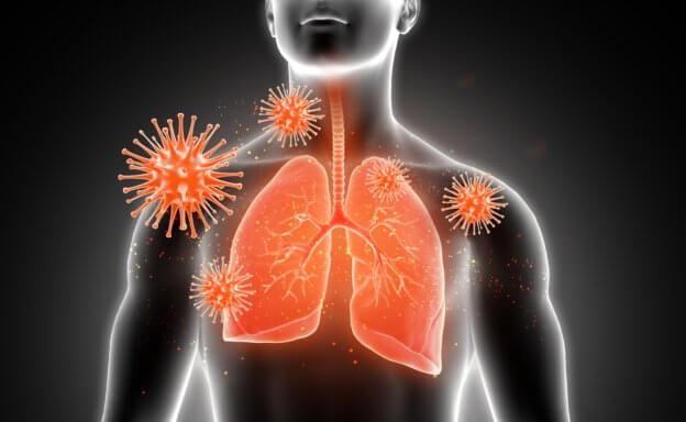 武漢肺炎病毒基因定序出爐,源自蝙蝠可能性高